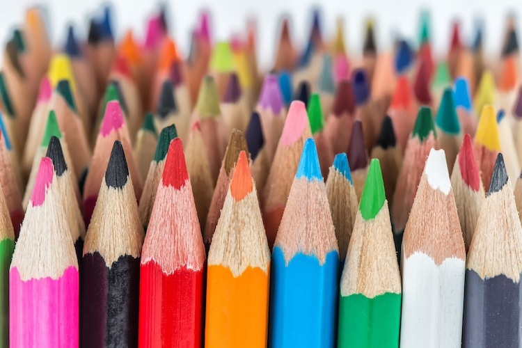 The Best Colored Pencils to Use for Beginners to Professional Artists