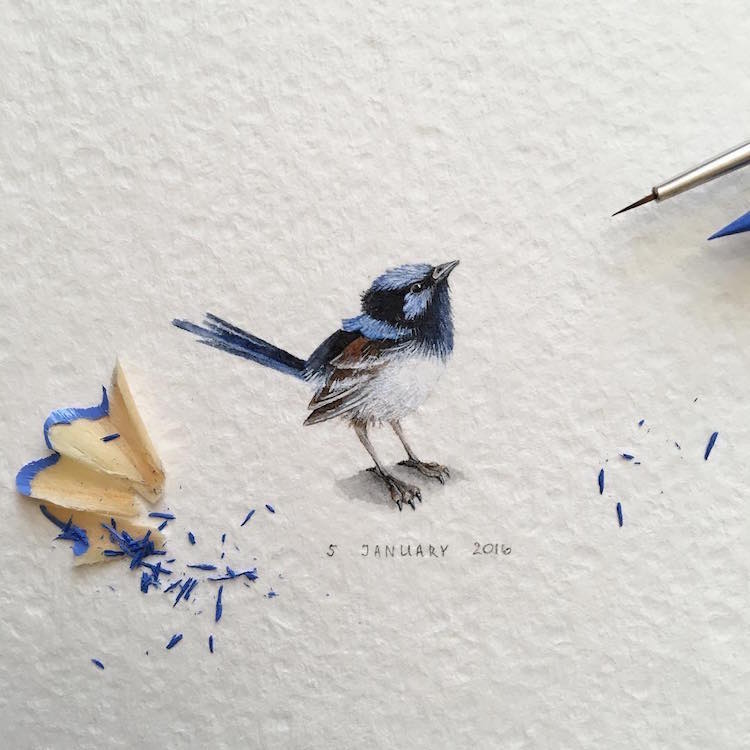 Bird Art Birds As Art