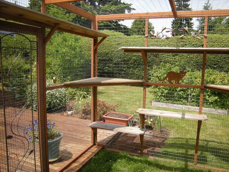 It S Possible To Build Your Own Cat Patio Catio Es Easy Follow Plans That Can Fit Exact Specifications