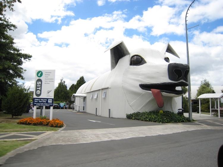 Big Dog Information Centre