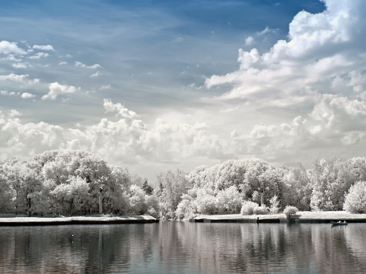 Infrared Photo Project Idea