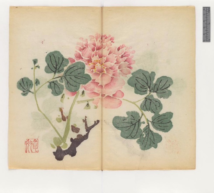 Oldest Book MultiColor - Manual for Painting and Calligraphy
