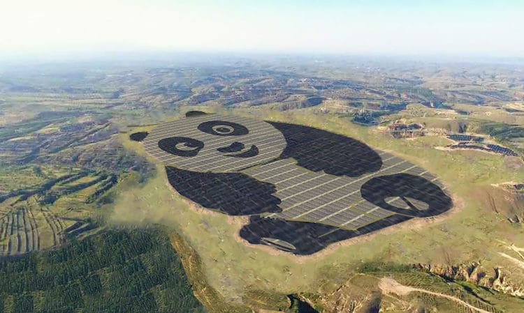 panda shaped solar farm