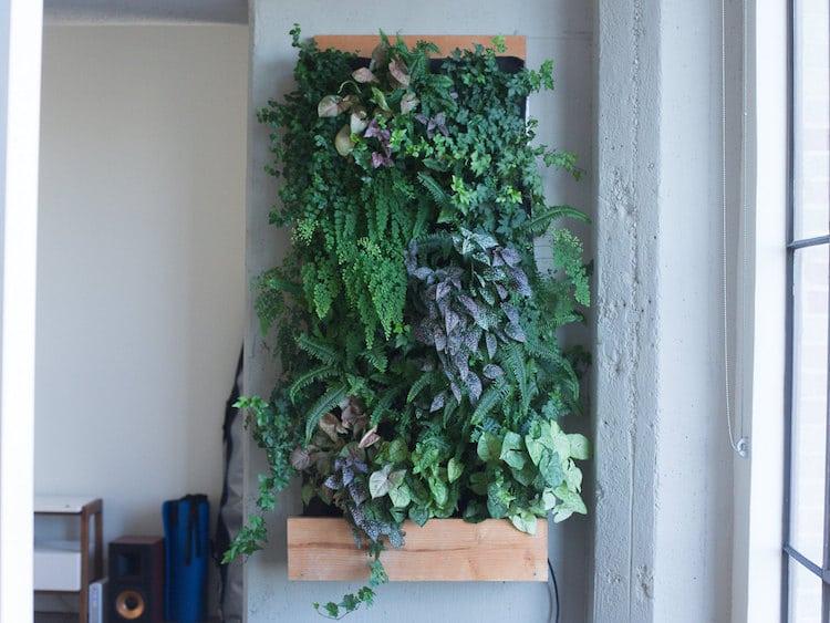 Matt Rabinovitch - Self Watering Vertical Garden