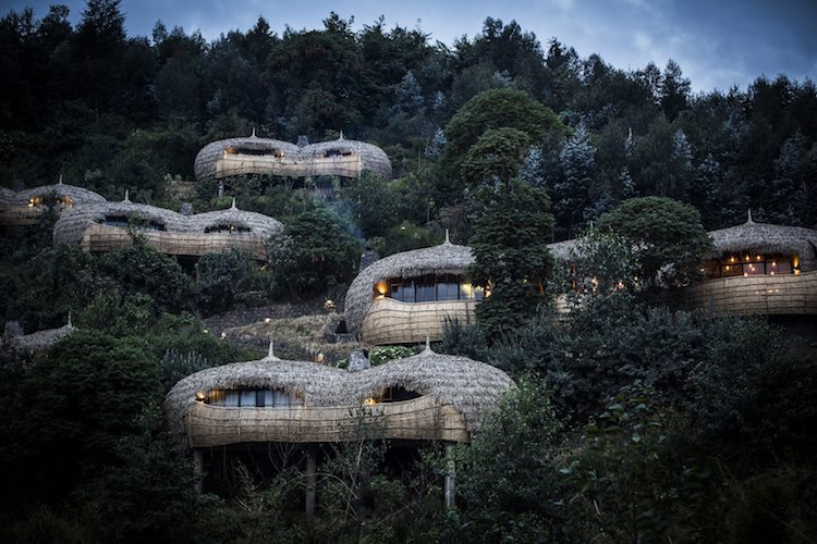 Bistae Lodge Eco-Travel in Rwanda