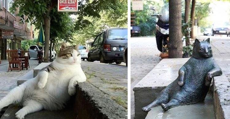 Tombili Cat Sculpture Istanbul