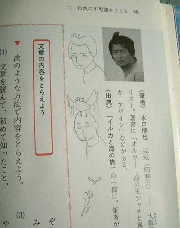 Hilarious Textbook Doodles