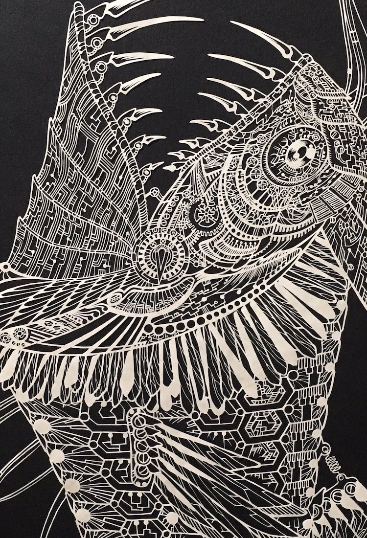 Paper Cutting Artist Kiri Ken
