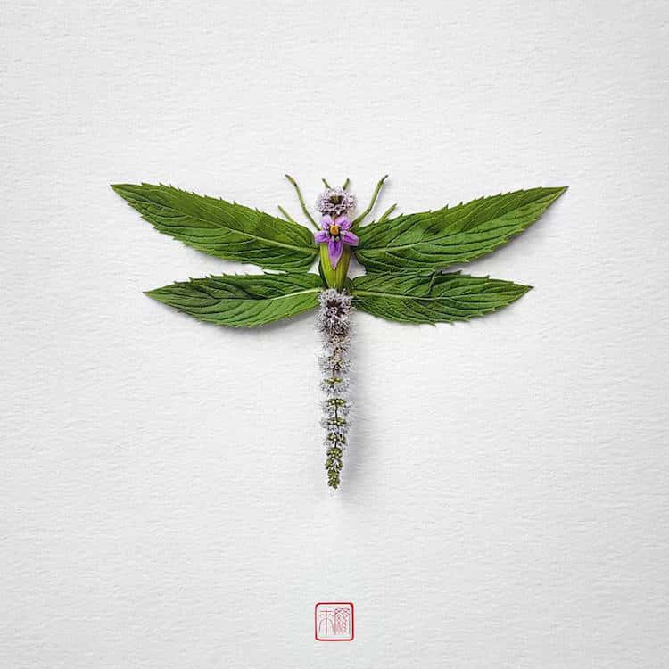 Raku Inoue Insect Art Floral Arrangements