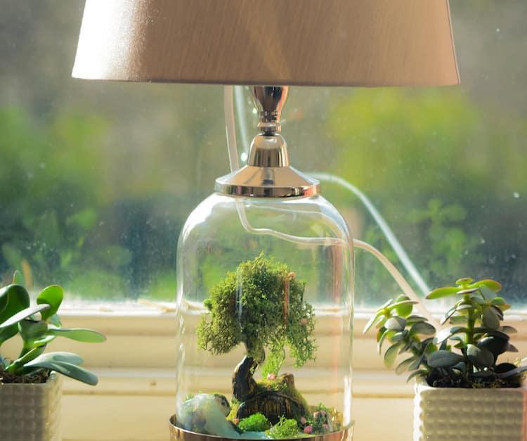Terrarium Lamp Base Turns Ordinary Lighting Into
