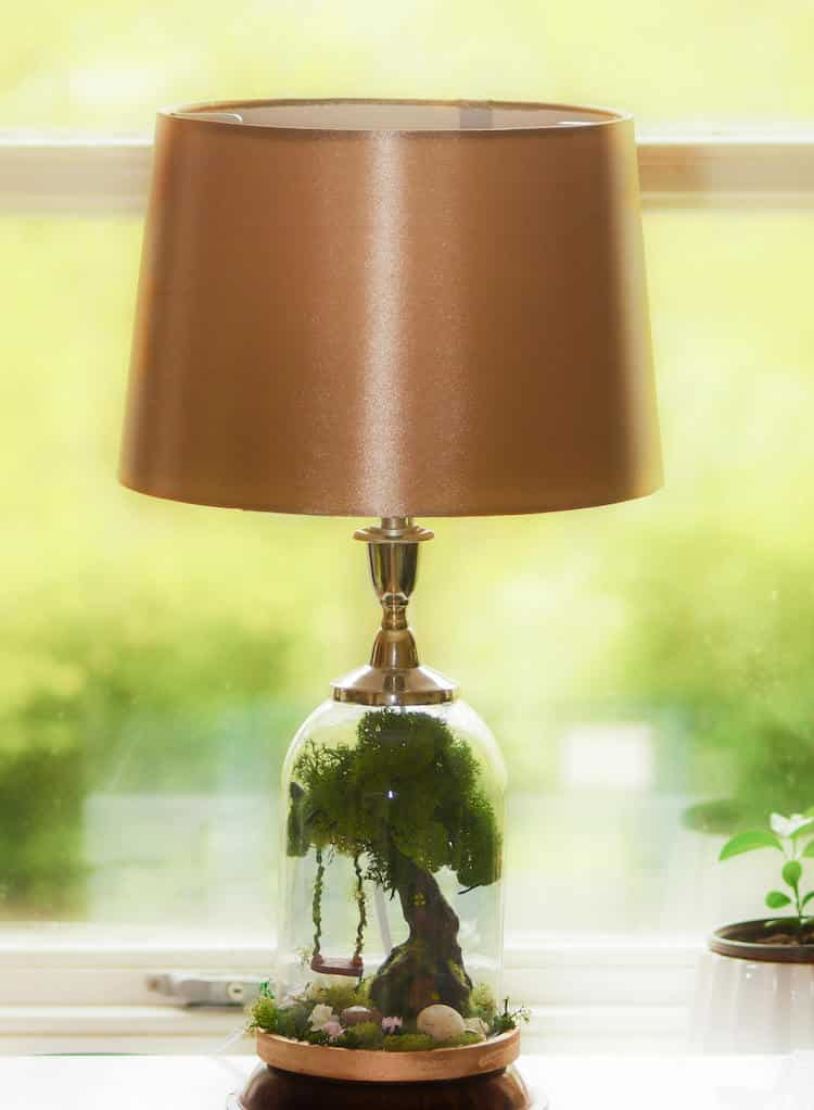 Terrarium Lamp Base Turns Ordinary Lighting Into