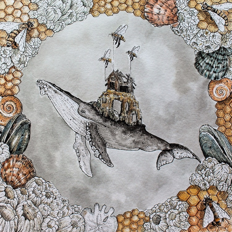 Whale Art Whale Illustration Ink Drawing Marissa Quinn