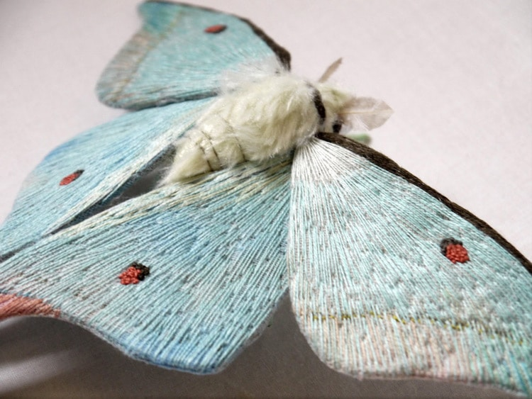 Artist Reinvents Nature Through with Fabric Sculptures of Textile Moths
