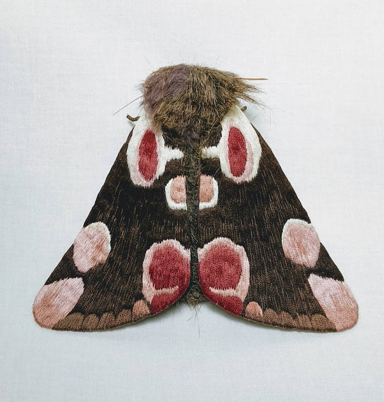 Textile Moths by Yumi Okita