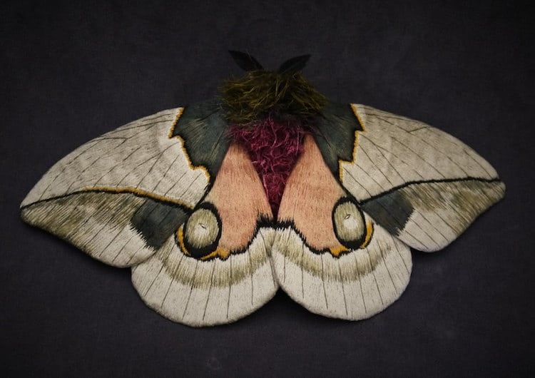 Fabric Sculptures of Textile Moths