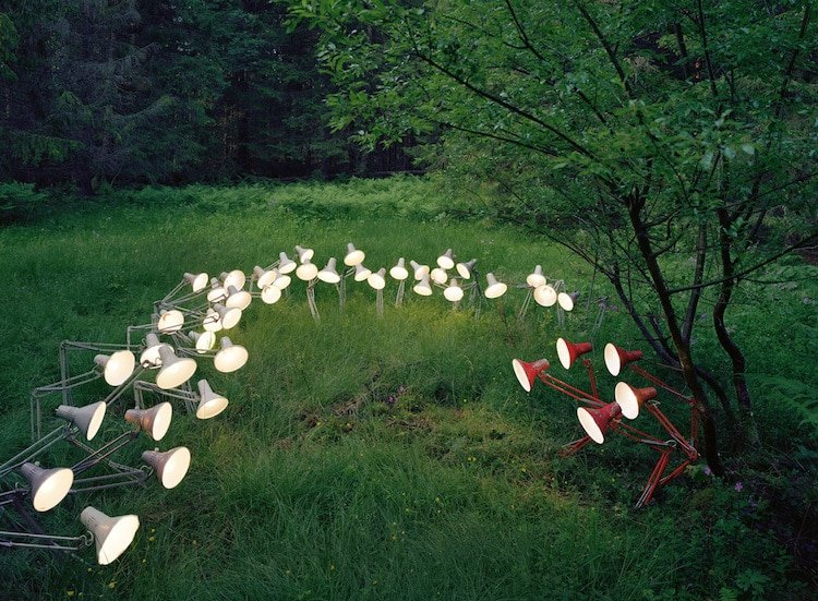Nature Art Installation Rune Guneriussen