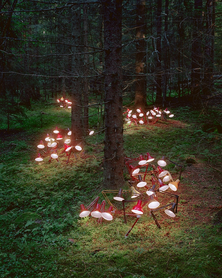 Nature Art Installation Rune Guneriussen