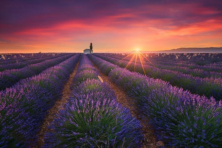 landscape photography tips albert dros