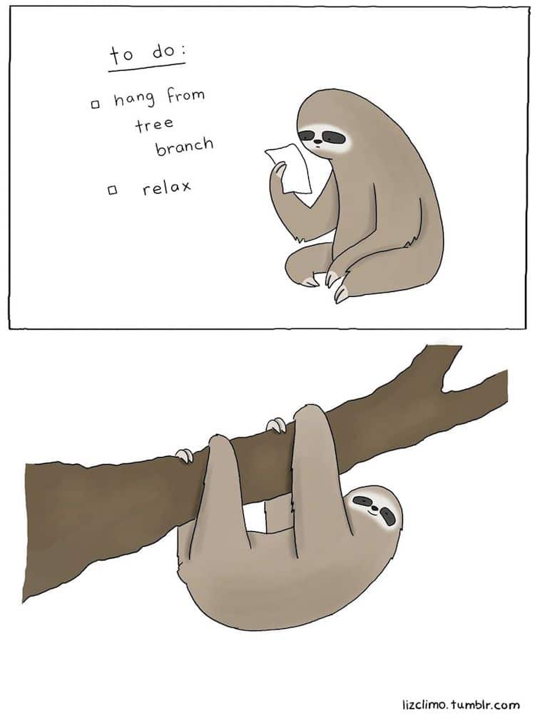 Animal Comics by Liz Climo