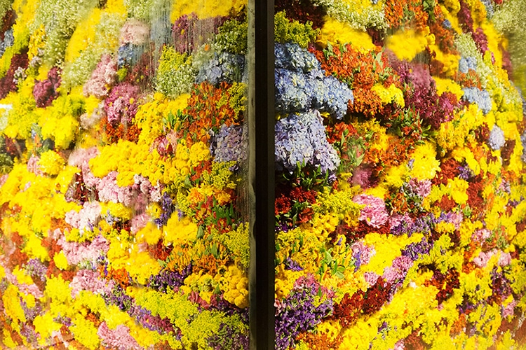 Azuma Makoto Flower Art