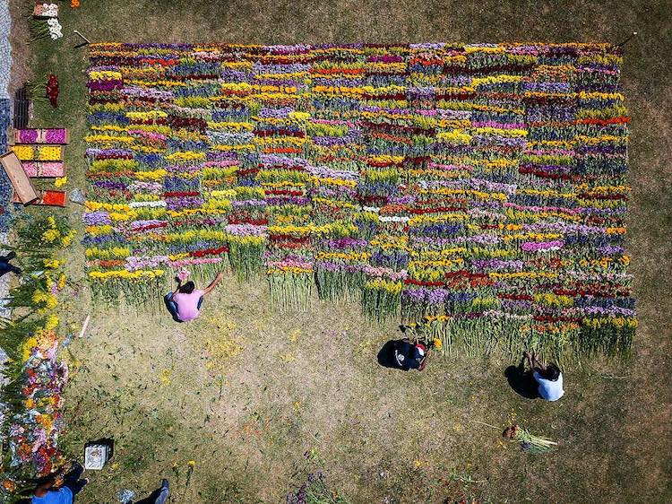 Flower Art Installation Azuma Makoto Japanese Artist