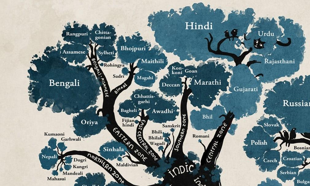 Minna Sundberg Linguistic Tree Illustration