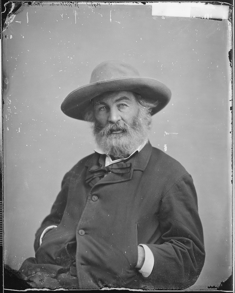 mathew brady portrait walt whitman