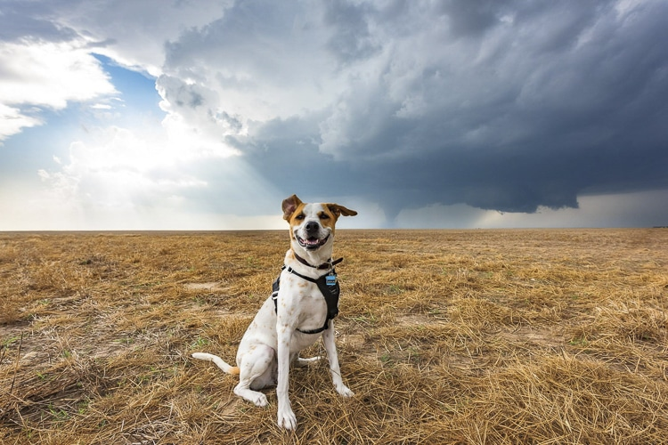 Storm Chaser Photography