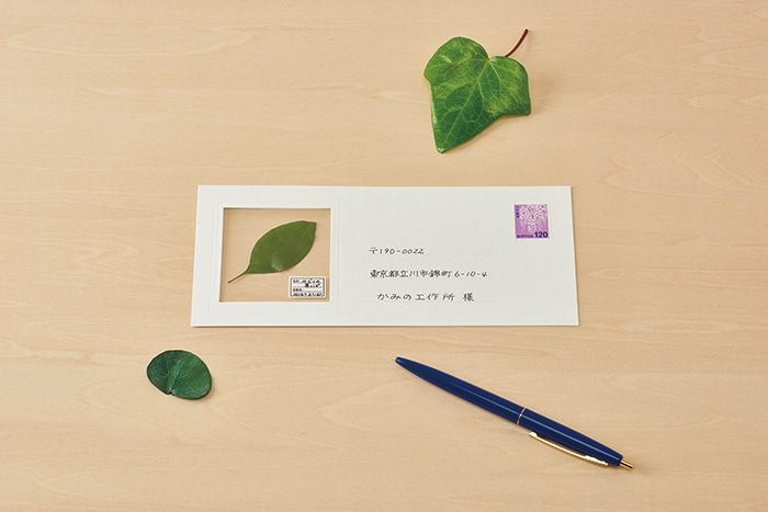 Unique Stationary Send Plants by Mail Haruka Shinji