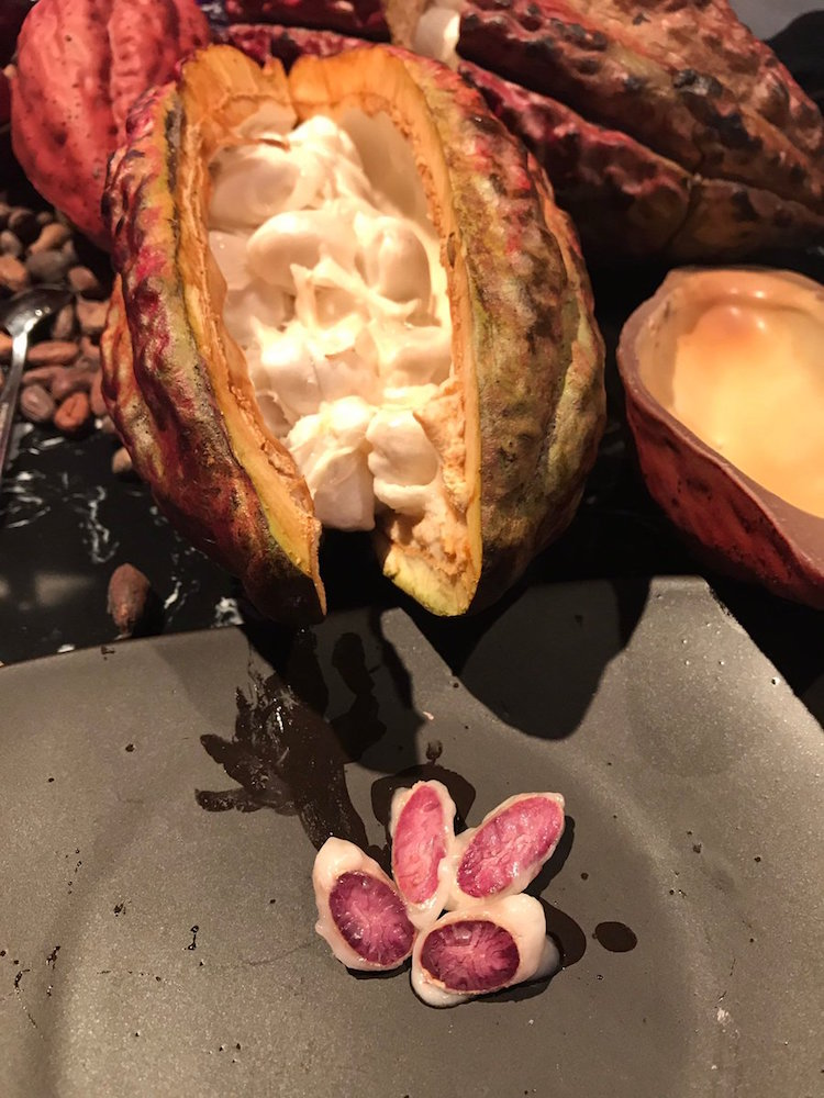 Image result for barry callebaut ruby chocolate