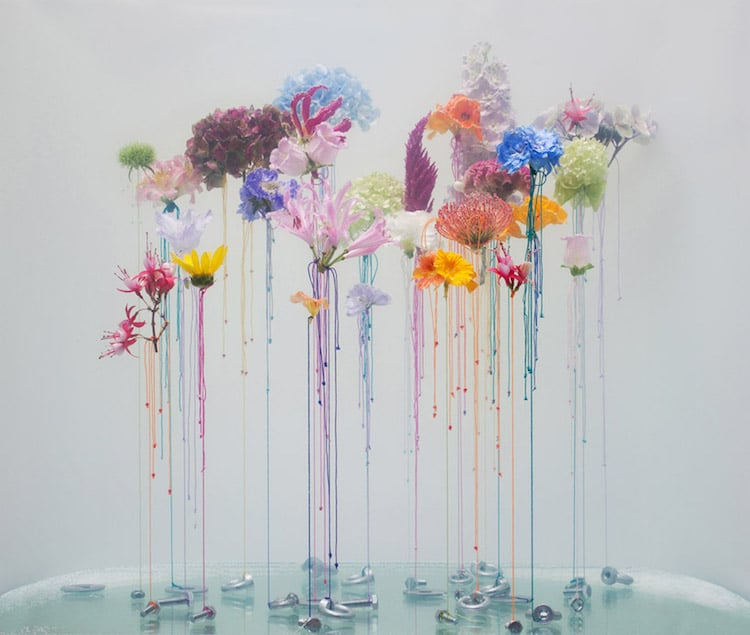 Flower Art Underwater Ballet Anne ten Donkelaar