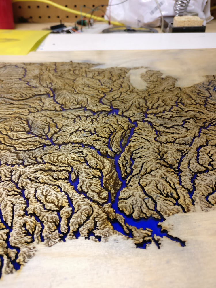 An Intracoastal Waterway Map Is Like A Work Of Art With Beautiful Feather Like Pattern