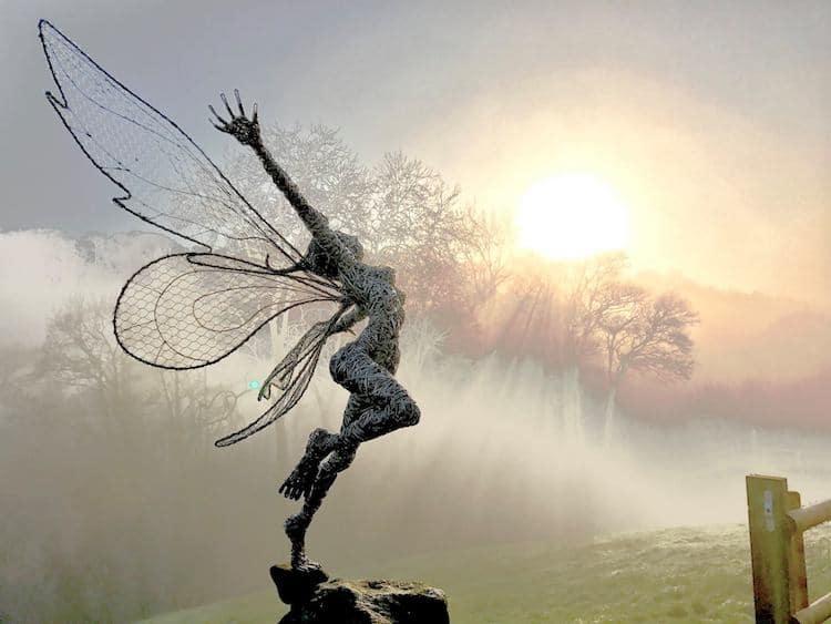 Wire Sculpture Robin Wight