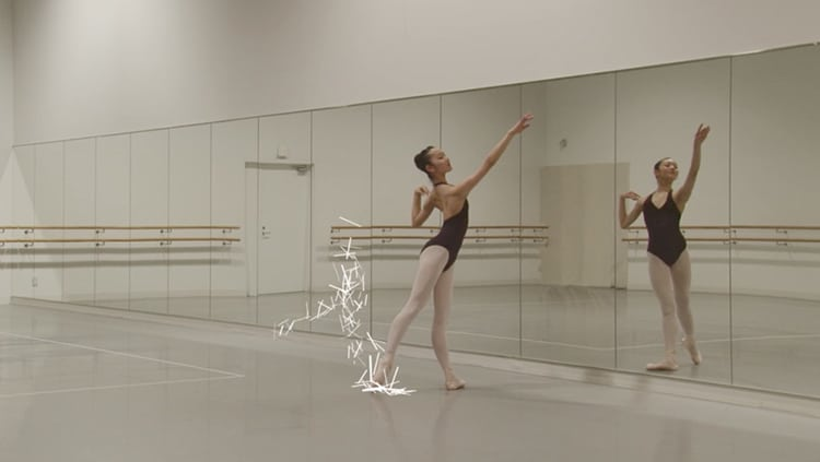 Ballet Rotoscope Animation by EUPHRATES