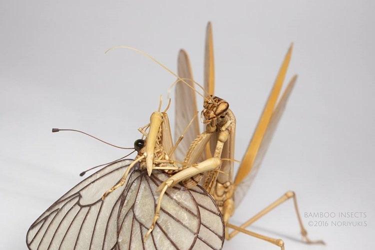 Insect Art by Noriyuki Saitoh