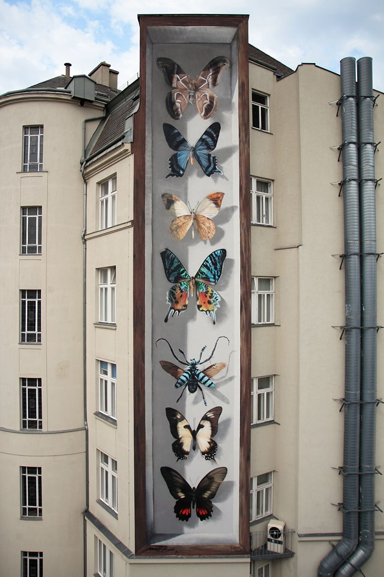Street Artist Turns Buildings Into Gigantic Butterfly