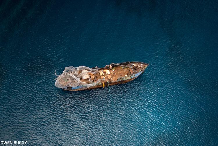 kodiak qween artificial reef