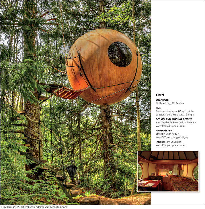 Cool Tiny Houses Tree House