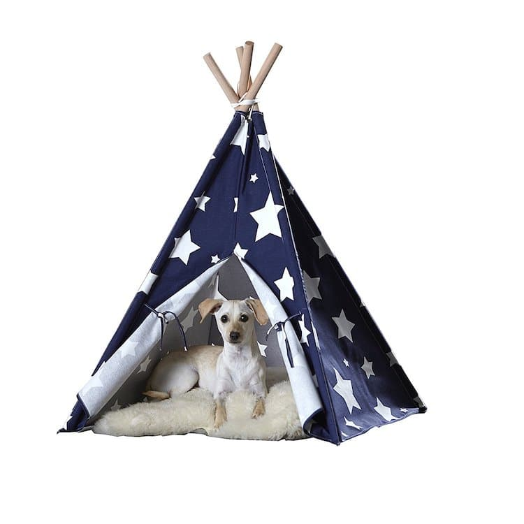 Dog Teepee House