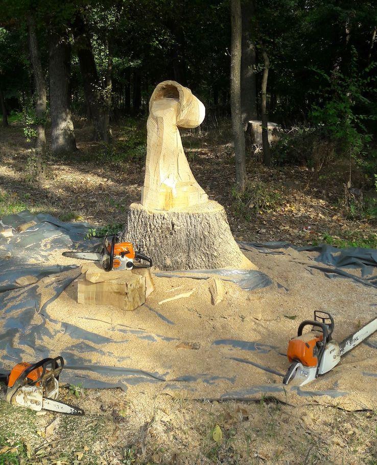 Gabi Rizea Chainsaw Artist