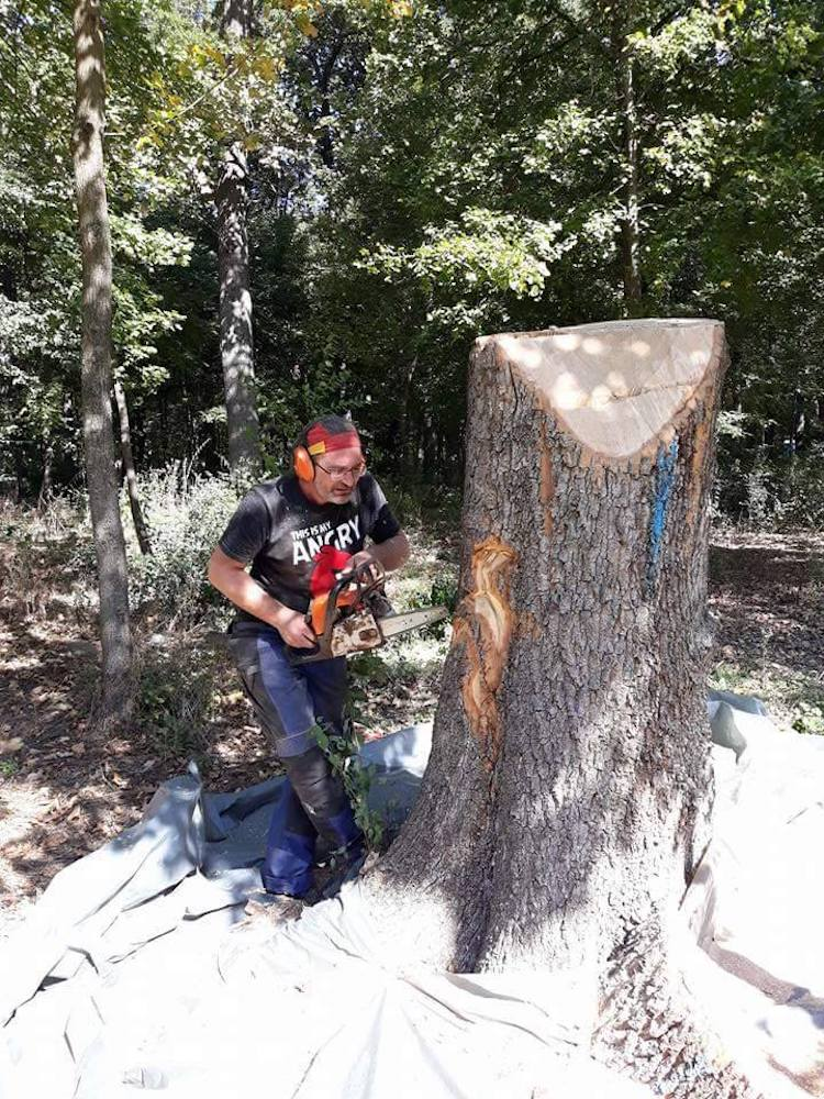 Gabi Rizea Chainsaw Art wood sculpture