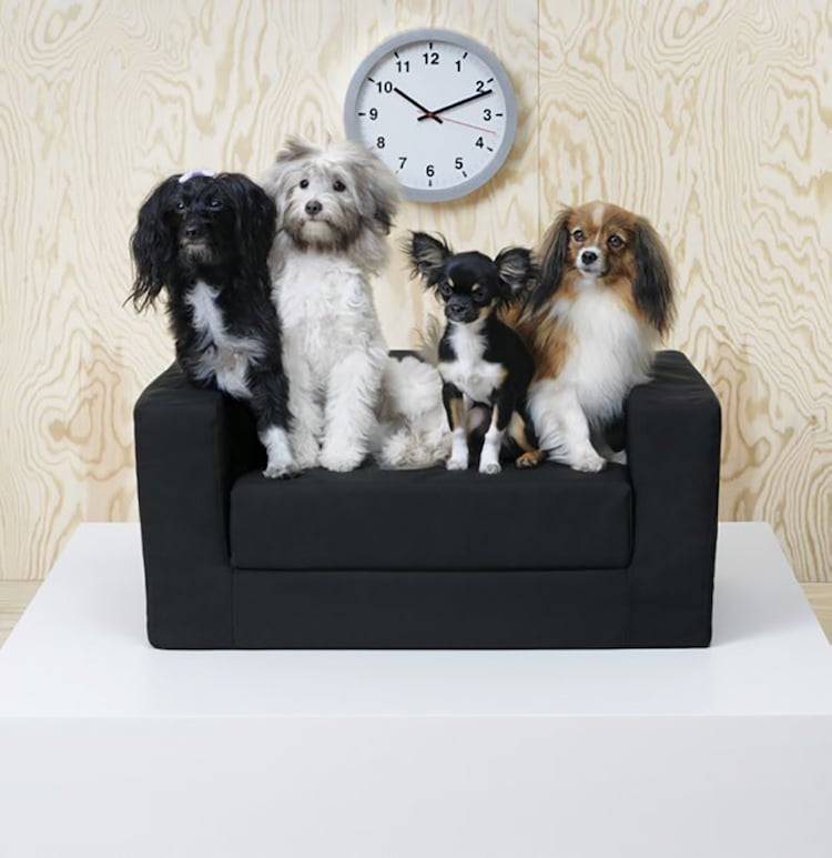 Ikea S New Pet Furniture Collection Is Designed With Veterinarians