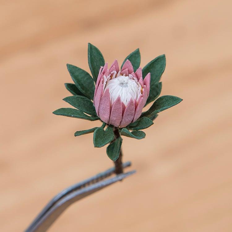 Tiny TePaper Plant Sculptures Raya Sader Bujanarrariums