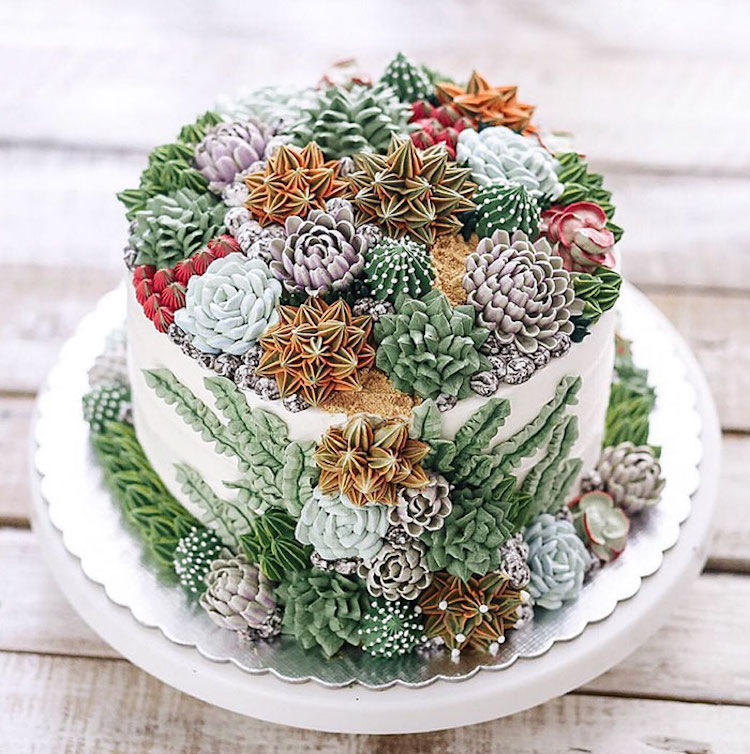 Nature-Inspired Cakes Nature Cake Succulent Cake