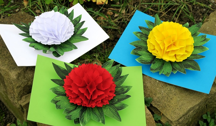 Pop Up Cards by Peter Dahmen