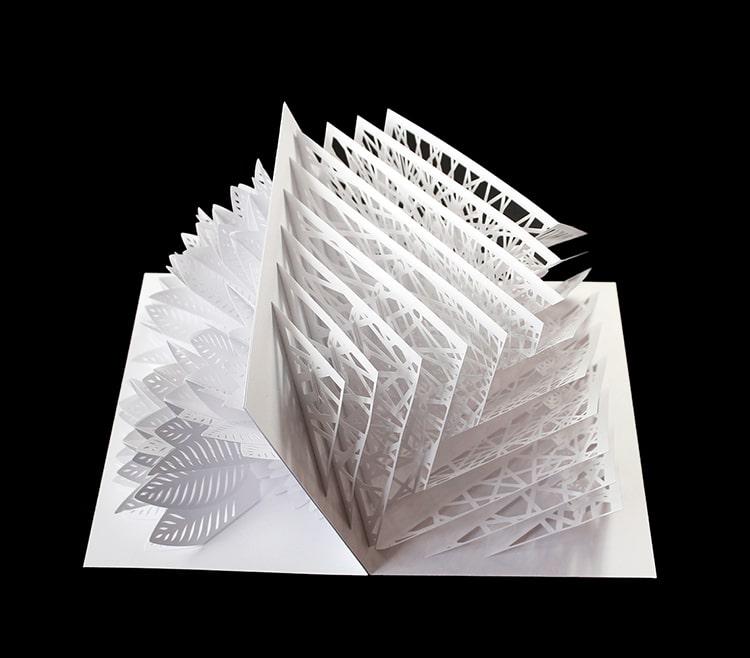 Pop Up Cards by Peter Dahmen