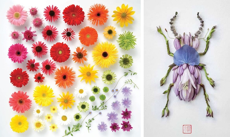Unconventional Floral Arrangements Flower Arrangements Flower Art Botanical Art