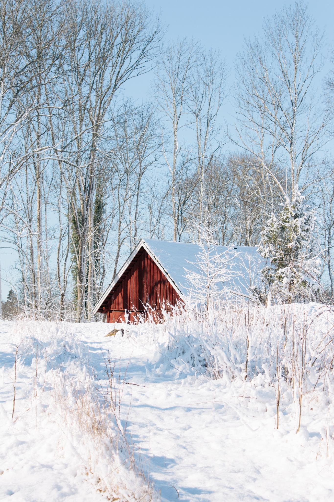 cabaña navideña