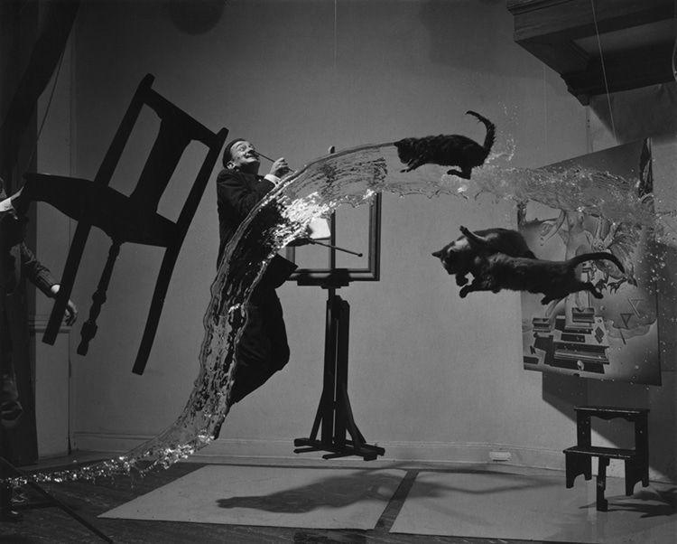 Dali Atomicus Recreation by Karl Taylor