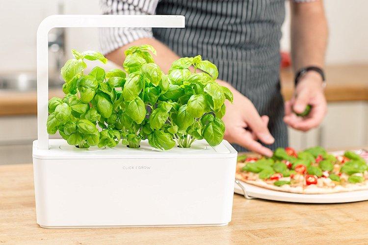 Click & Grow Indoor Smart Fresh Herb Garden Ki